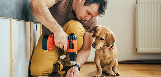 Man drills floor boards with his dog