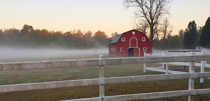 Red barn in the early morning fog