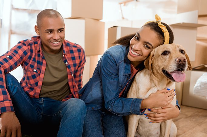 a couple takes a break from moving with their dog